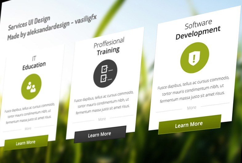 Company Services User Interface Free PSD