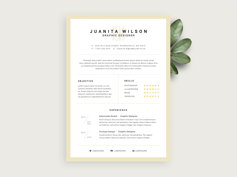 simple resume template free psd - Simple Resume Templates Free